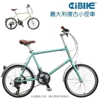 BREEZE - 20 inch 21 spd mini velo bicycle